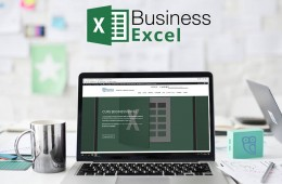 Business Excel. Curs practic.